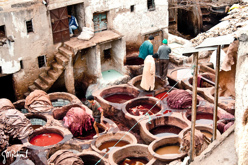 IMG_1814-Fes-tanneries